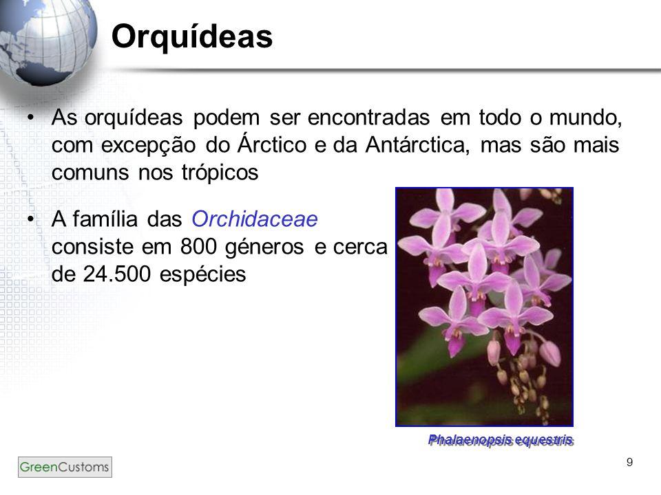 9 Orquídeas As orquídeas podem ser encontradas em todo o mundo, com excepção do Árctico e da Antárctica, mas são mais comuns nos trópicos A família da