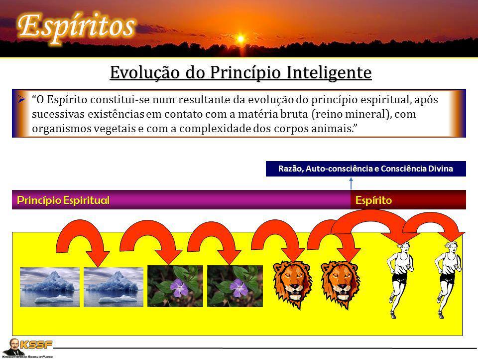 """Evolução do Princípio Inteligente Princípio Espiritual Espírito Razão, Auto-consciência e Consciência Divina  """"O Espírito constitui-se num resultante"""