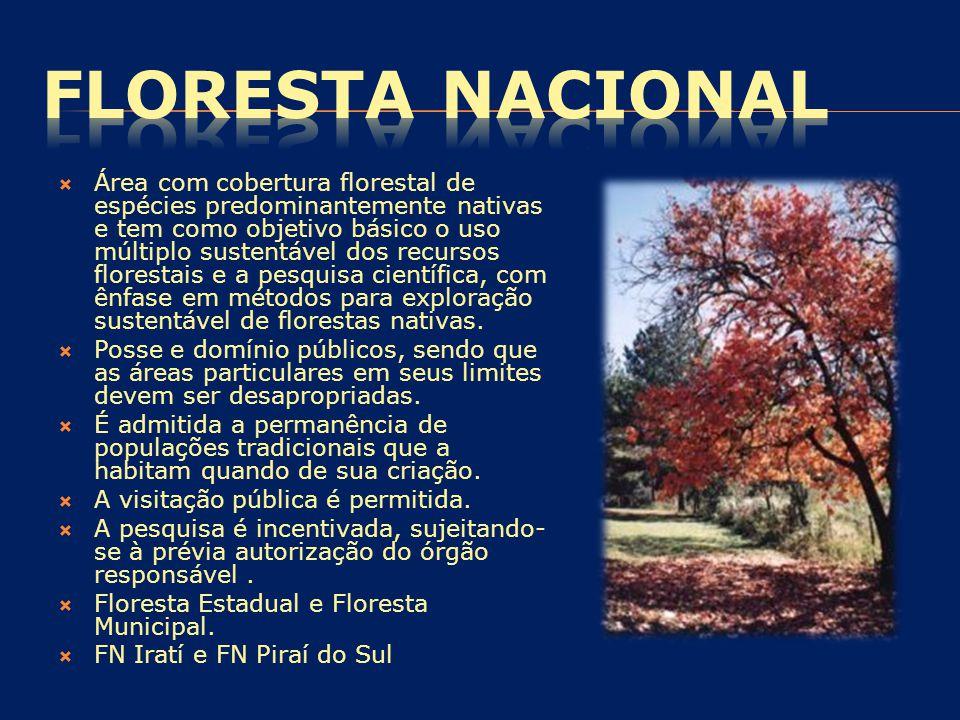  Área com cobertura florestal de espécies predominantemente nativas e tem como objetivo básico o uso múltiplo sustentável dos recursos florestais e a