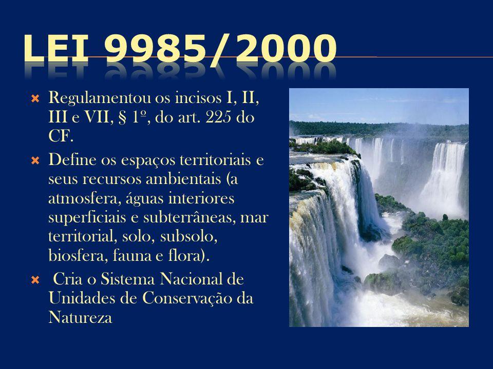  Regulamentou os incisos I, II, III e VII, § 1º, do art. 225 do CF.  Define os espaços territoriais e seus recursos ambientais (a atmosfera, águas i