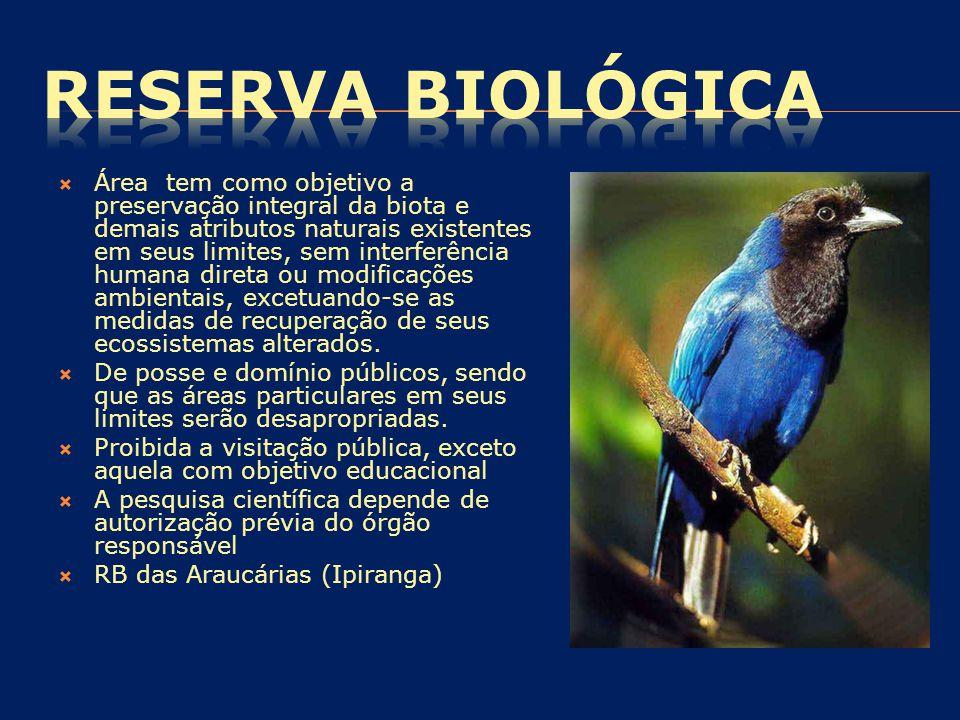  Área tem como objetivo a preservação integral da biota e demais atributos naturais existentes em seus limites, sem interferência humana direta ou mo