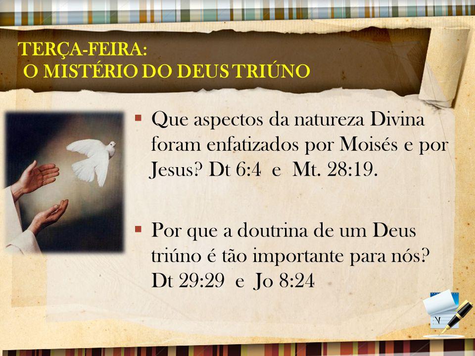 TERÇA-FEIRA: O MISTÉRIO DO DEUS TRIÚNO  Que aspectos da natureza Divina foram enfatizados por Moisés e por Jesus? Dt 6:4 e Mt. 28:19.  Por que a dou