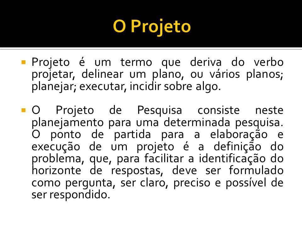  Projeto é um termo que deriva do verbo projetar, delinear um plano, ou vários planos; planejar; executar, incidir sobre algo.