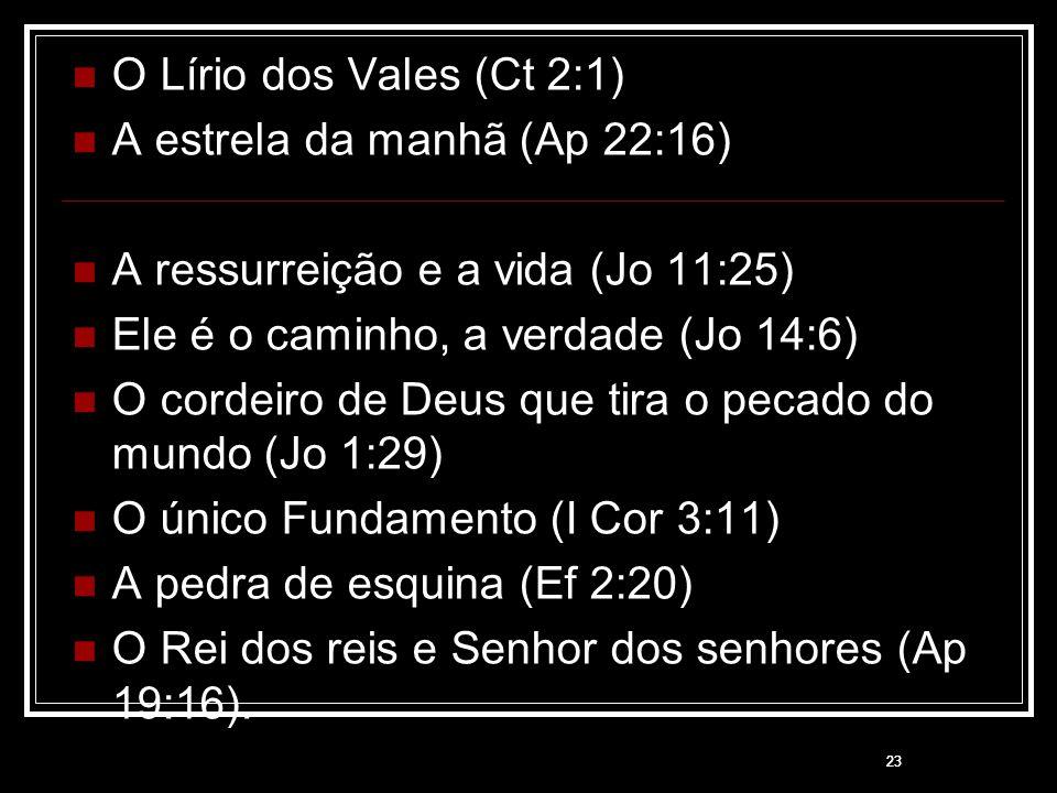 23 O Lírio dos Vales (Ct 2:1) A estrela da manhã (Ap 22:16) A ressurreição e a vida (Jo 11:25) Ele é o caminho, a verdade (Jo 14:6) O cordeiro de Deus