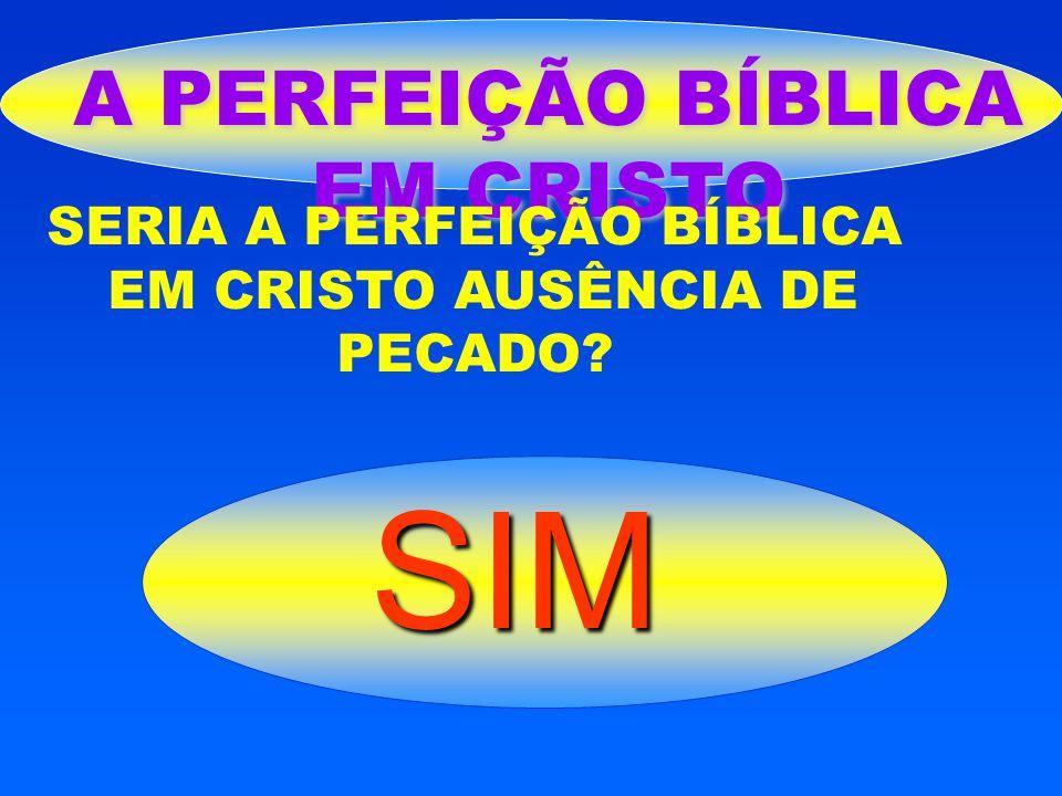 A PERFEIÇÃO BÍBLICA EM CRISTO SERIA A PERFEIÇÃO BÍBLICA EM CRISTO AUSÊNCIA DE PECADO? SIM