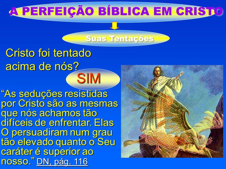 """A PERFEIÇÃO BÍBLICA EM CRISTO Cristo foi tentado acima de nós? SIM Suas Tentações """"As seduções resistidas por Cristo são as mesmas que nós achamos tão"""