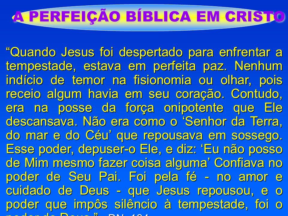 """A PERFEIÇÃO BÍBLICA EM CRISTO """"Quando Jesus foi despertado para enfrentar a tempestade, estava em perfeita paz. Nenhum indício de temor na fisionomia"""