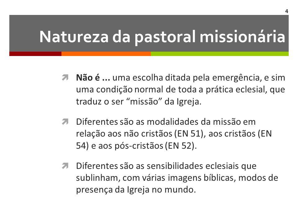 Natureza da pastoral missionária  Não é...