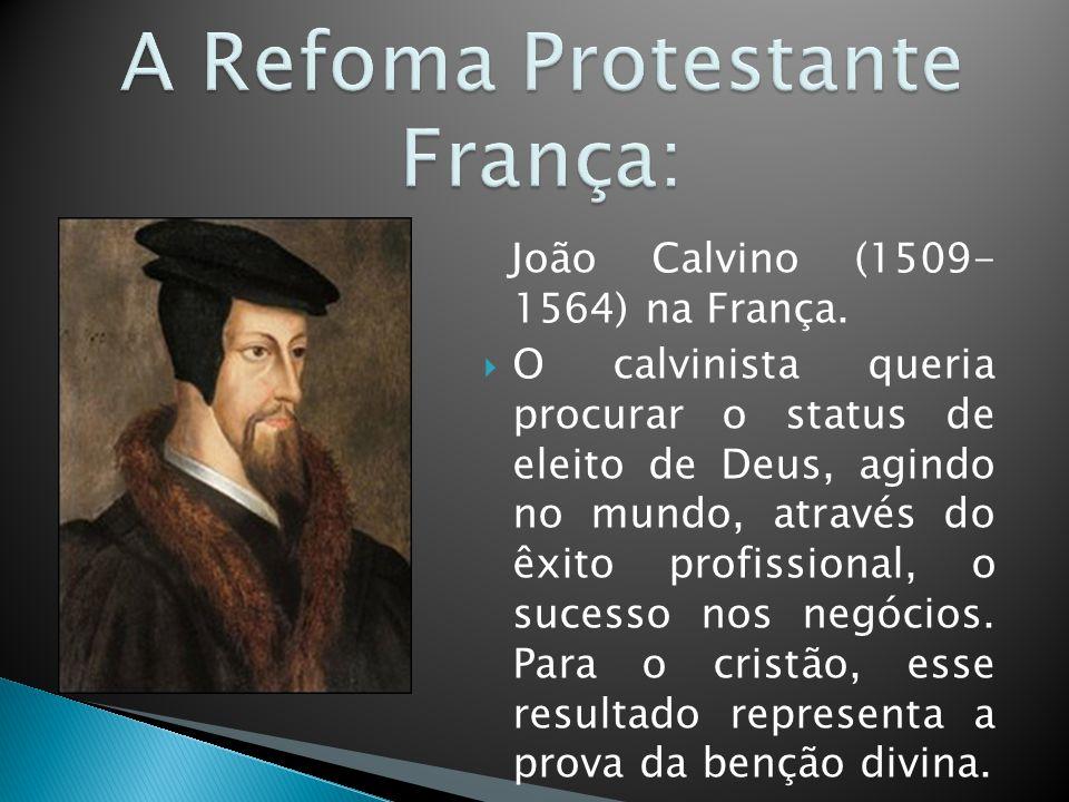 João Calvino (1509- 1564) na França.