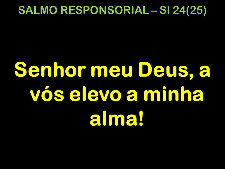 SALMO RESPONSORIAL – Sl 24(25) Senhor meu Deus, a vós elevo a minha alma!
