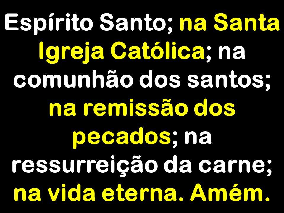 Espírito Santo; na Santa Igreja Católica; na comunhão dos santos; na remissão dos pecados; na ressurreição da carne; na vida eterna. Amém.