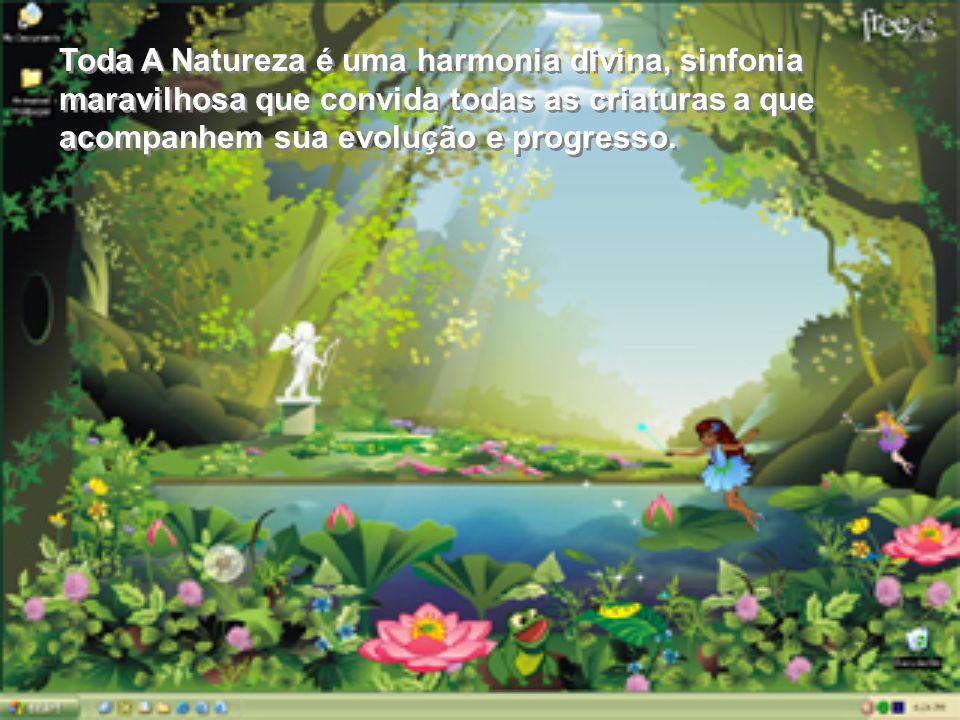 RESPEITE A NATUREZA Imagens: internet Formatação: ClauManfredi – Fev/2008 Imagens: internet Formatação: ClauManfredi – Fev/2008