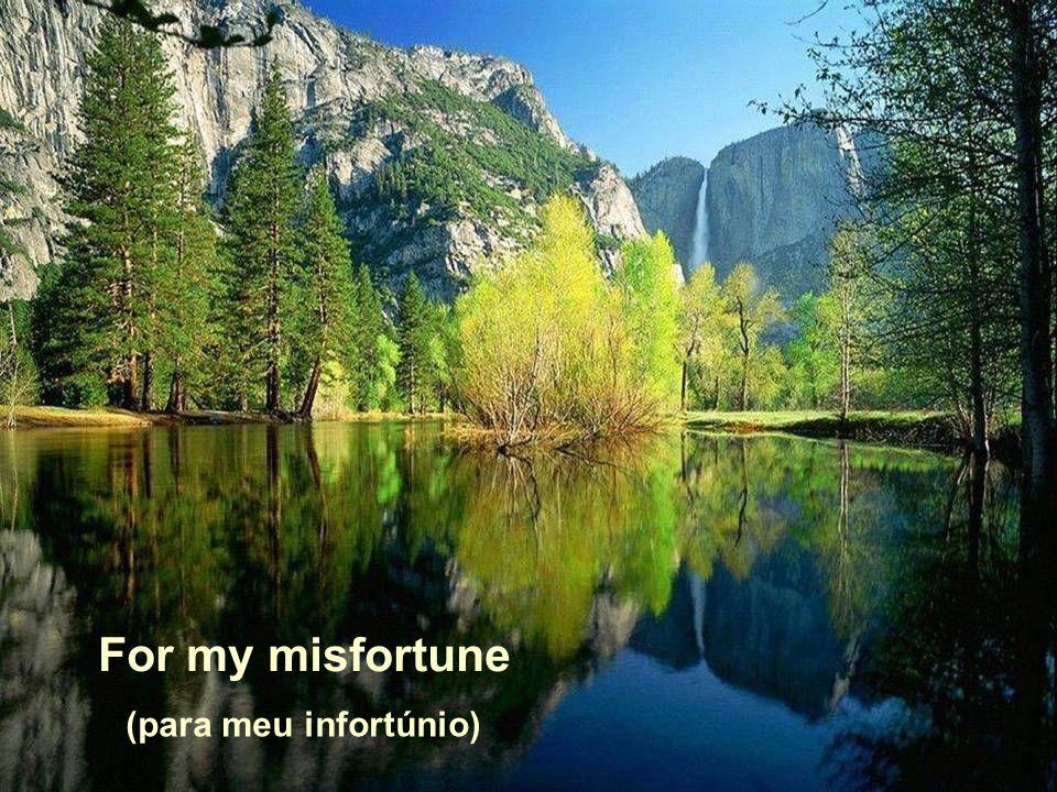 For my misfortune (para meu infortúnio)
