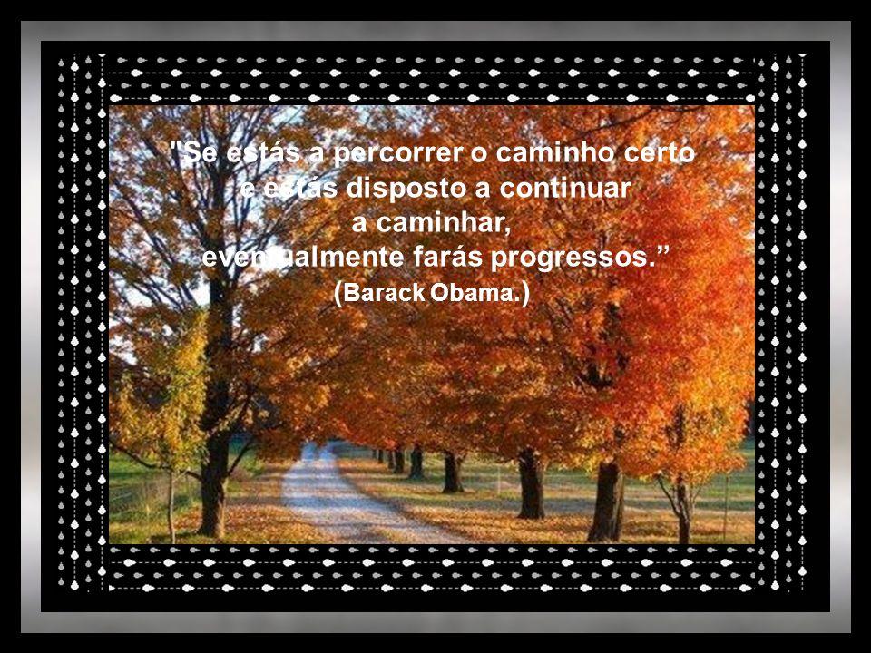 Se estás a percorrer o caminho certo e estás disposto a continuar a caminhar, eventualmente farás progressos. ( Barack Obama.
