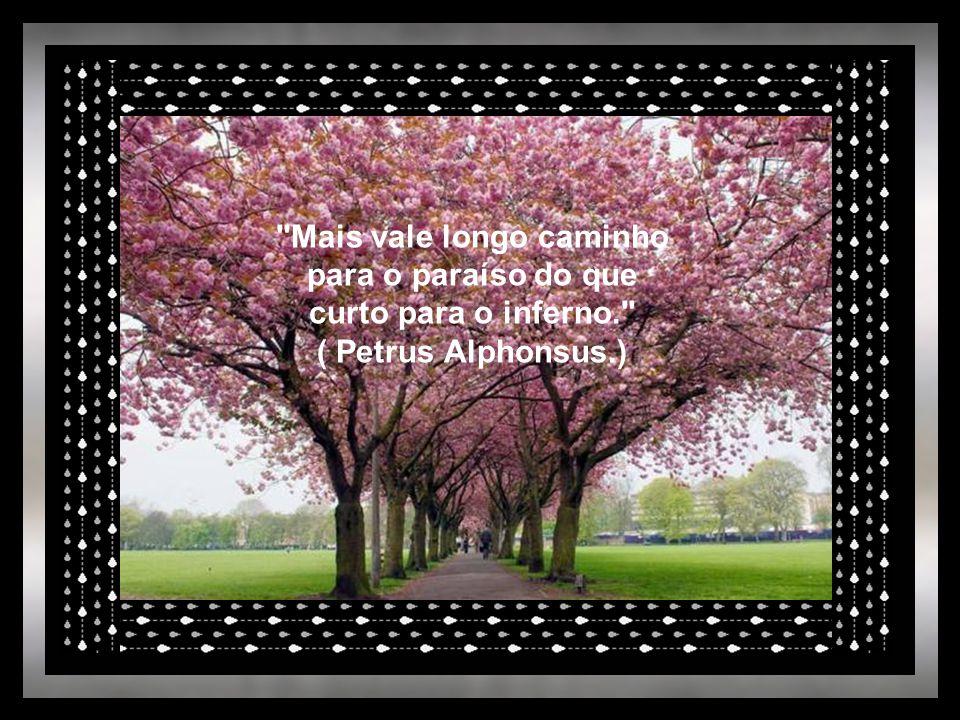 Mais vale longo caminho para o paraíso do que curto para o inferno. ( Petrus Alphonsus.)