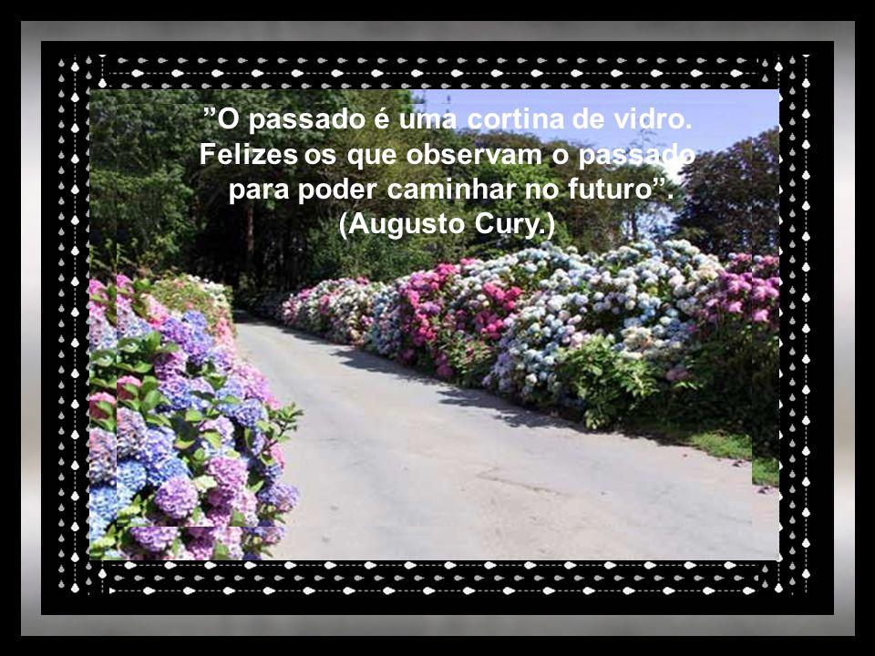 """""""Observa em teu caminho a distância vencida e nunca o que ainda falta."""" (Heber Salvador de Lima.)"""