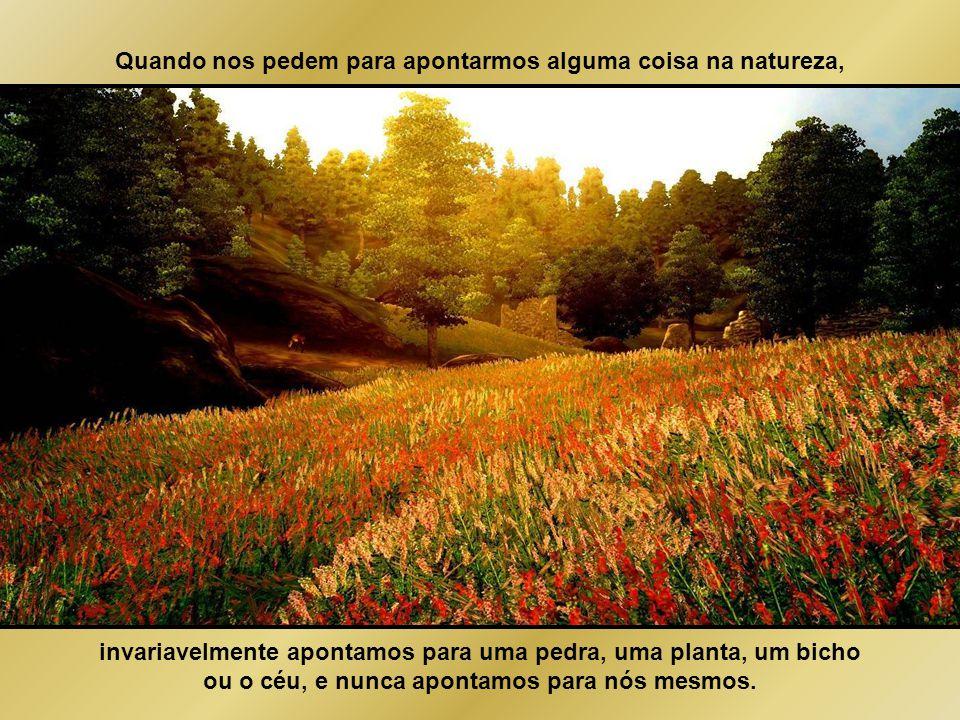 """""""Natureza é apenas um nome para um efeito cuja causa é Deus"""" William Cowper William Cowper"""