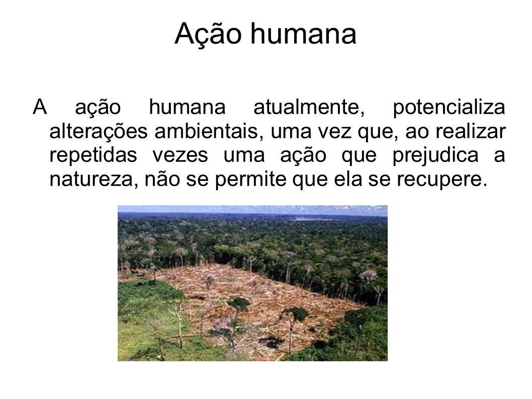 Os incêndios Os incêndios, principalmente, quando provocados repetidamente pela ação humana, matam os micro-organismo decompositores, empobrecem o solo e dificultam a infiltração da água, impedindo que este seja usado para agricultura.