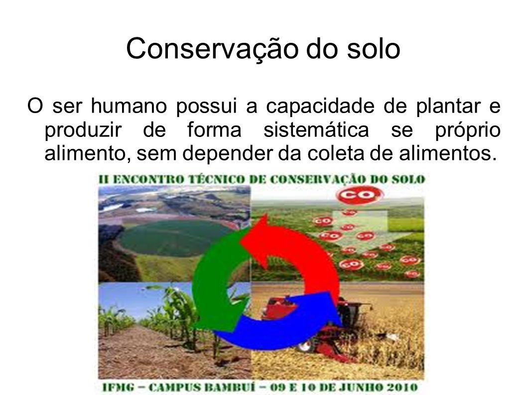 Recursos Naturais Recursos naturais são aqueles produzidos pela natureza e que podem ser úteis ao ser humano.