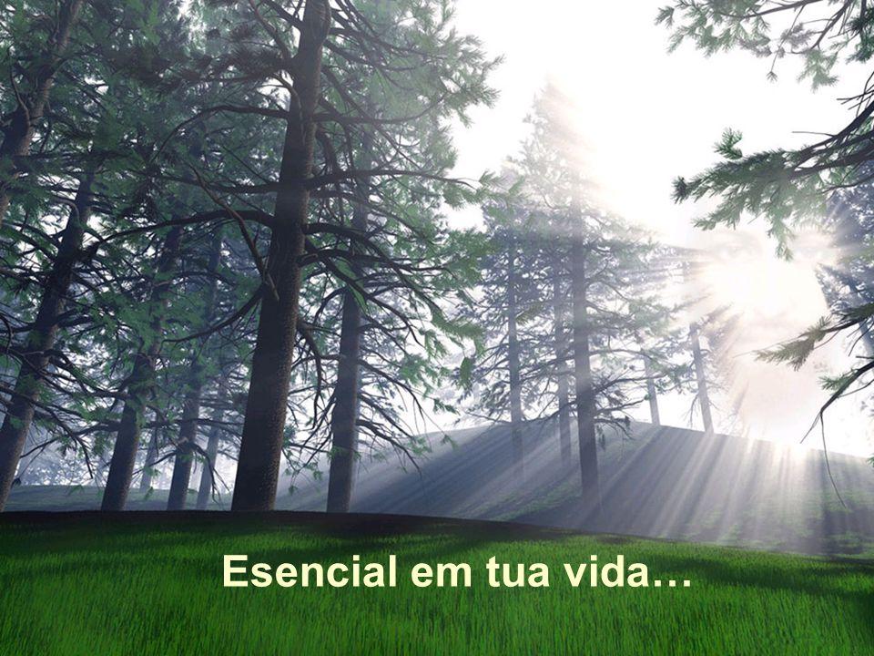 Esencial em tua vida…