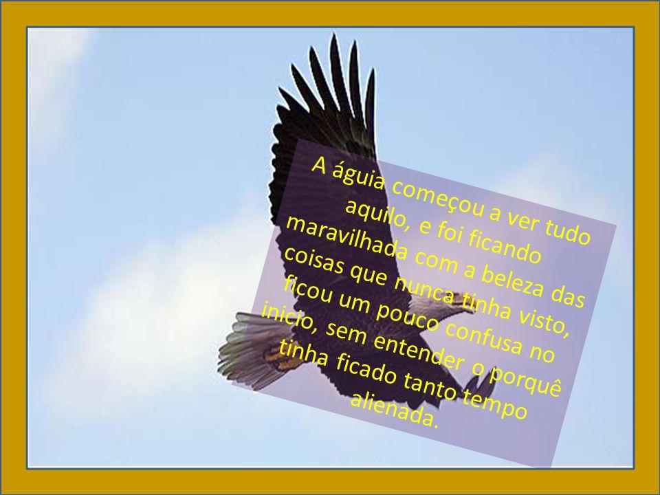 Então ela sentiu seu sangue de águia correr nas veias, perfilou, devagar, suas asas e partiu num vôo lindo, até que desapareceu no horizonte azul.