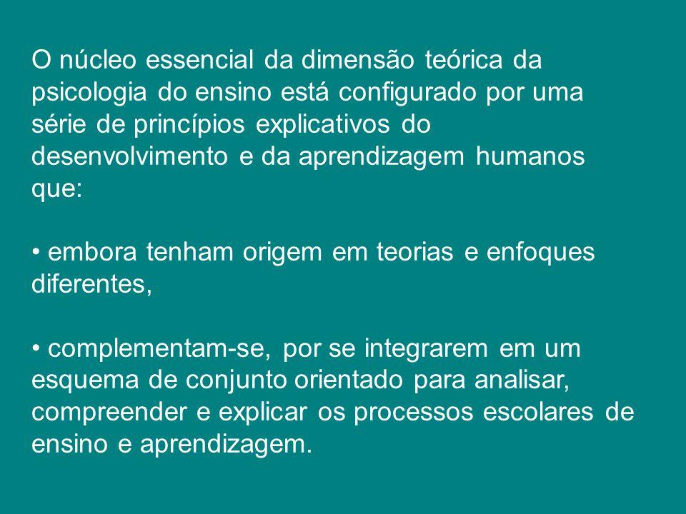O núcleo essencial da dimensão teórica da psicologia do ensino está configurado por uma série de princípios explicativos do desenvolvimento e da apren