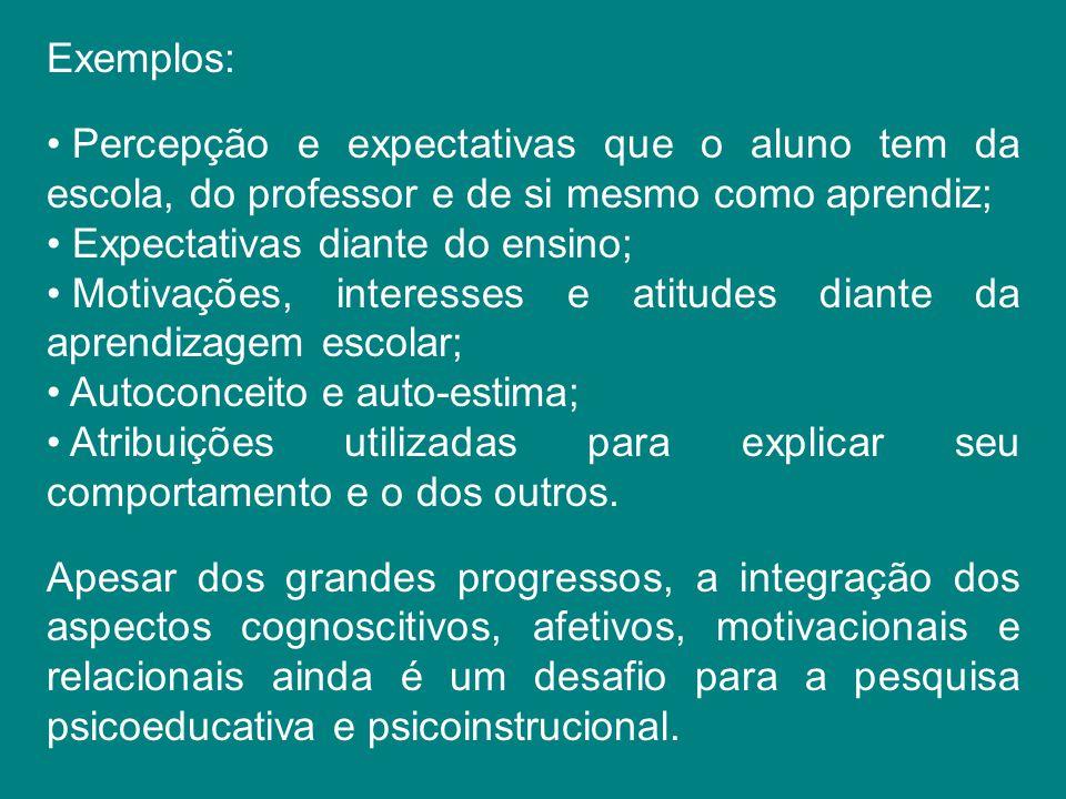 Exemplos: Percepção e expectativas que o aluno tem da escola, do professor e de si mesmo como aprendiz; Expectativas diante do ensino; Motivações, int