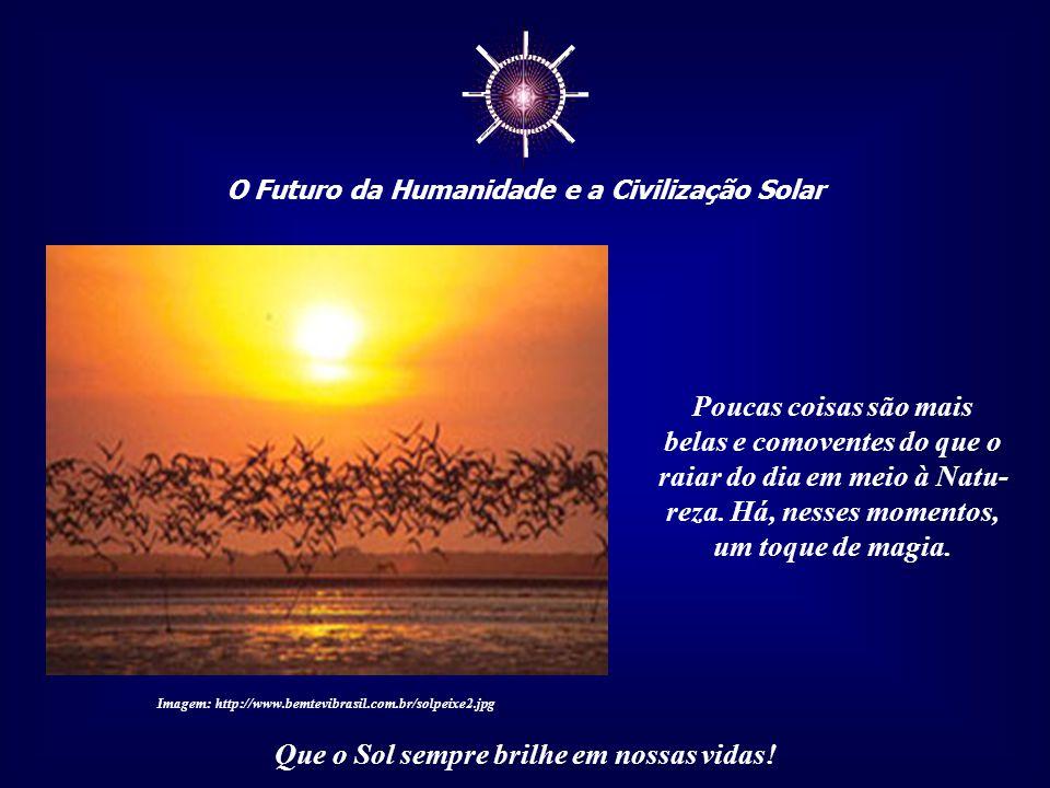 """☼ O Futuro da Humanidade e a Civilização Solar Que o Sol sempre brilhe em nossas vidas! Essa """"chuva de luz dourada"""" é reverenciada por toda a vida, pr"""