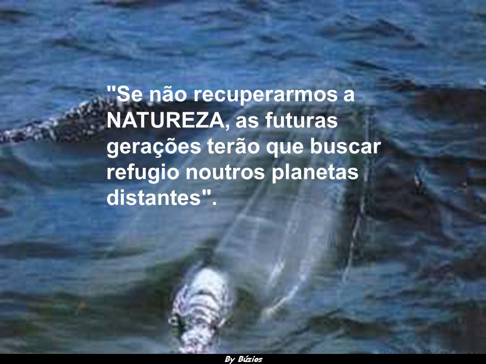 By Búzios O homem destrói a Terra que o acolhe e que lhe proporciona todos os seus meios de subsistência .