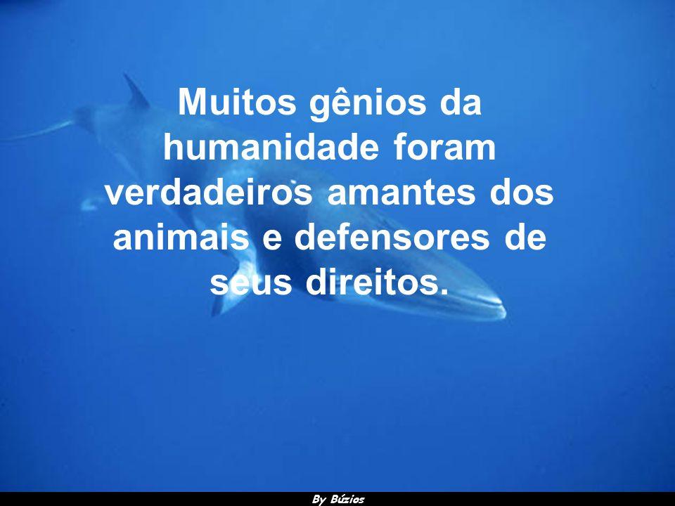 BY BÚZIOS SLIDE APRESENTA BY BÚZIOS SLIDE APRESENTA Ecologia