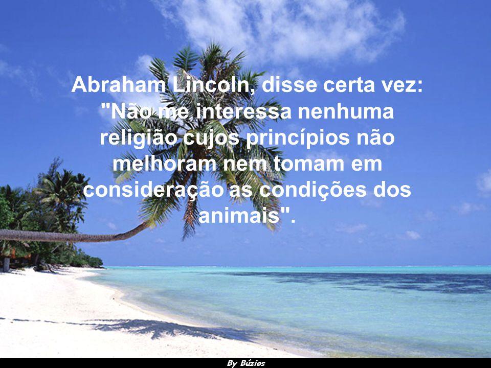 By Búzios Leonardo da Vinci disse: Chegará o dia em que os homens conhecerão o íntimo dos animais e, nesse dia, um crime contra qualquer um deles será considerado um crime contra a humanidade .