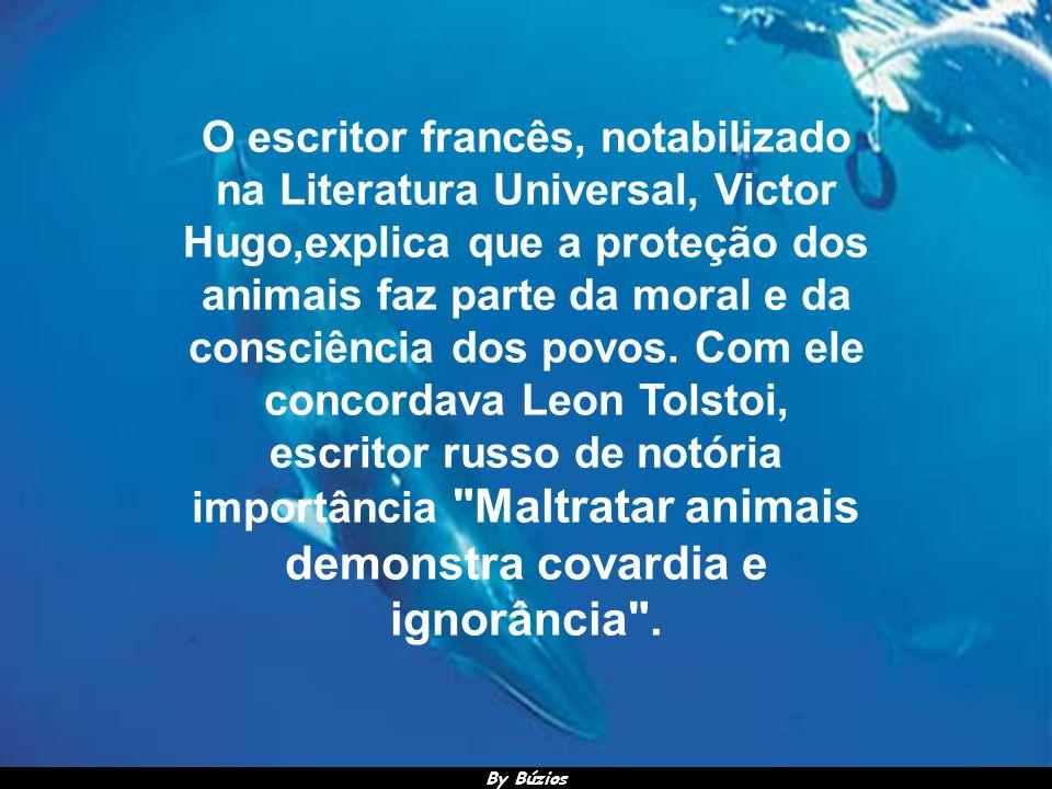 By Búzios Abraham Lincoln, disse certa vez: Não me interessa nenhuma religião cujos princípios não melhoram nem tomam em consideração as condições dos animais .