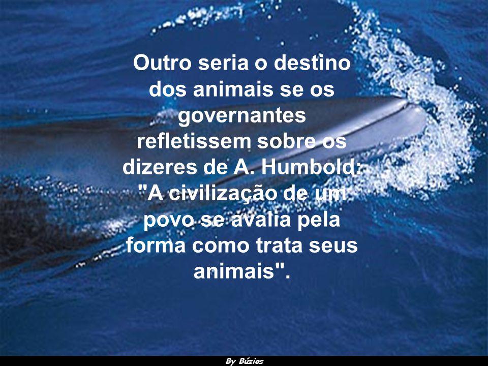 By Búzios O escritor francês, notabilizado na Literatura Universal, Victor Hugo,explica que a proteção dos animais faz parte da moral e da consciência dos povos.