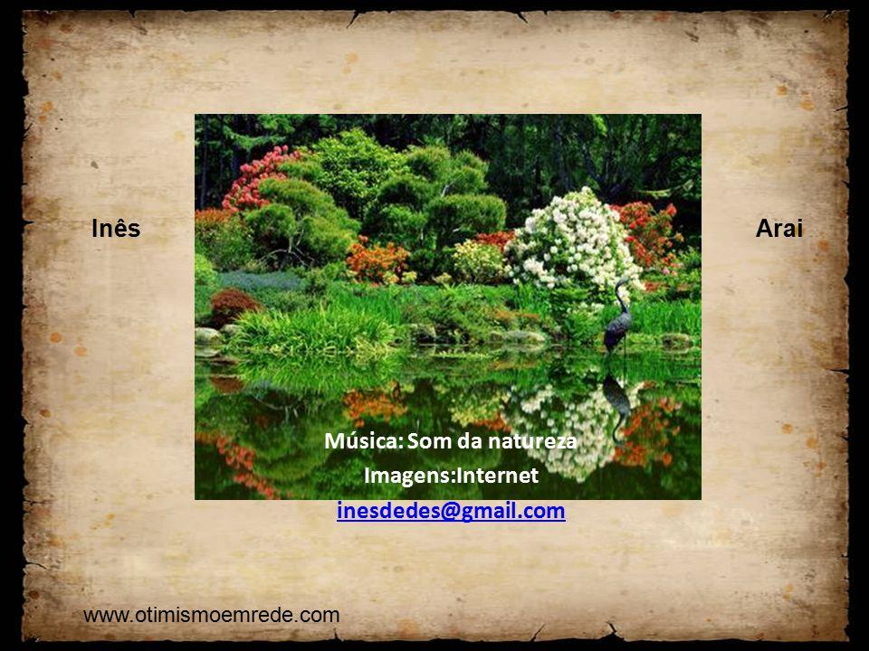 Música: Som da natureza Imagens:Internet inesdedes@gmail.com InêsArai www.otimismoemrede.com
