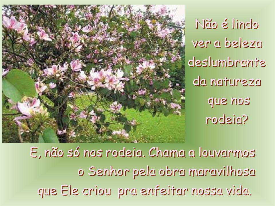 COMUNIDADE BOM PASTOR 34 anos de evangelização Paróquia Nossa Senhora de Copacabana Rua Hilário de Gouveia, 36 - Copacabana – RJ Sede da Comunidade – 9º andar Tel.: (21) 2236-5721 / 2236- 0973 combompastor@combompastor.com.br COMUNIDADE BOM PASTOR 34 anos de evangelização Paróquia Nossa Senhora de Copacabana Rua Hilário de Gouveia, 36 - Copacabana – RJ Sede da Comunidade – 9º andar Tel.: (21) 2236-5721 / 2236- 0973 combompastor@combompastor.com.br S.