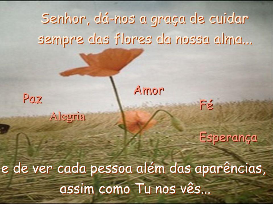 Senhor, dá-nos a graça de cuidar sempre das flores da nossa alma...