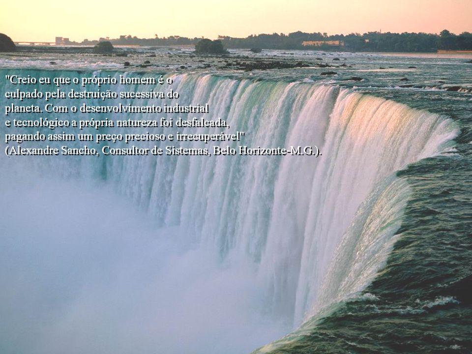 Para eles o que importa é o progresso, desprezando então, a natureza, o ar, e principalmente: a água, que se torna indispensável à vida no planeta. En
