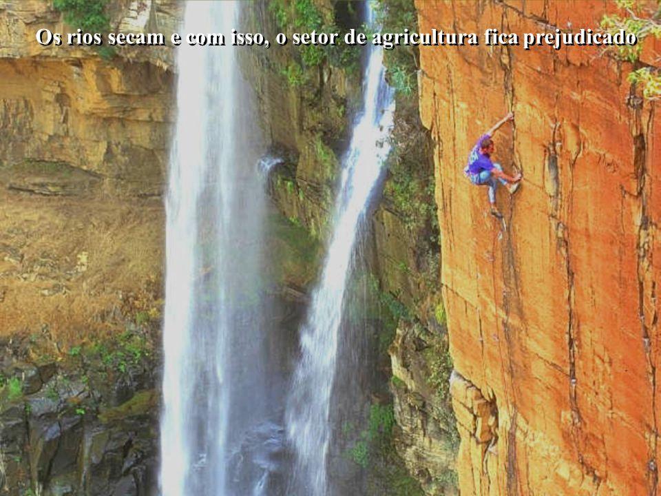 É melhor tentar e falhar, que preocupar-se e ver a vida passar.