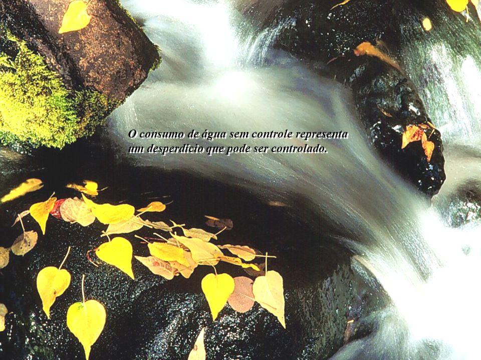 O consumo de água sem controle representa um desperdício que pode ser controlado.