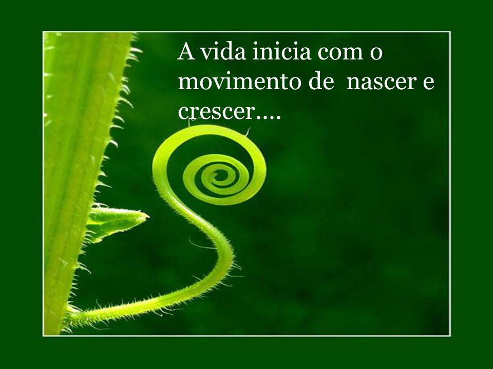 A vida inicia com um movimento... contínuo...