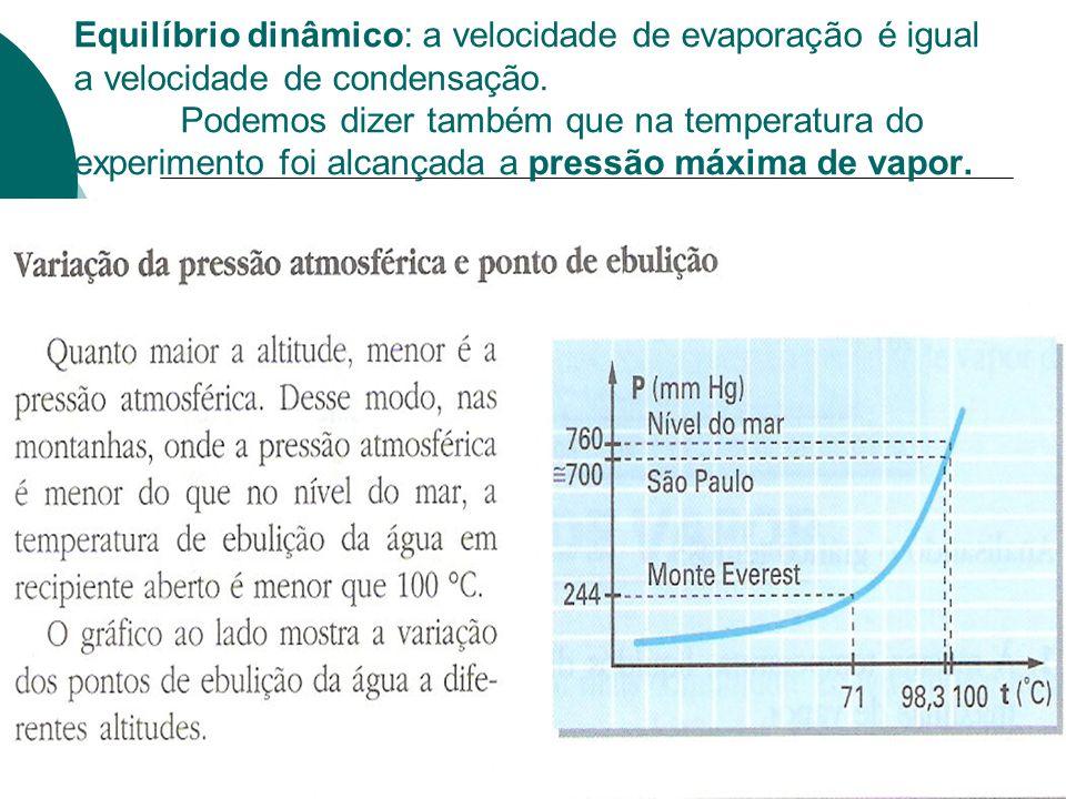 Equilíbrio dinâmico: a velocidade de evaporação é igual a velocidade de condensação. Podemos dizer também que na temperatura do experimento foi alcanç
