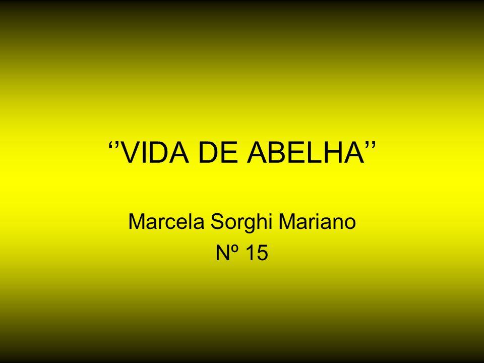 ''VIDA DE ABELHA'' Marcela Sorghi Mariano Nº 15