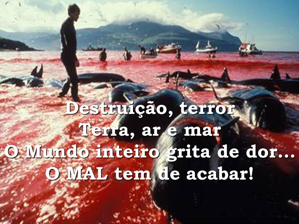Destruição, terror Terra, ar e mar O Mundo inteiro grita de dor… O MAL tem de acabar!