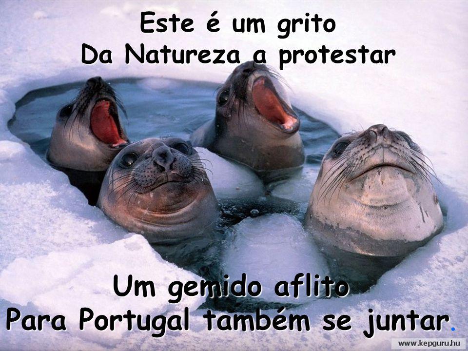 Um gemido aflito Para Portugal também se juntar Para Portugal também se juntar. Este é um grito Da Natureza a protestar