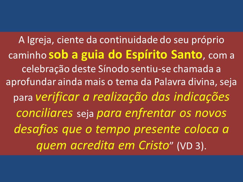 A Igreja, ciente da continuidade do seu próprio caminho sob a guia do Espírito Santo, com a celebração deste Sínodo sentiu-se chamada a aprofundar ain