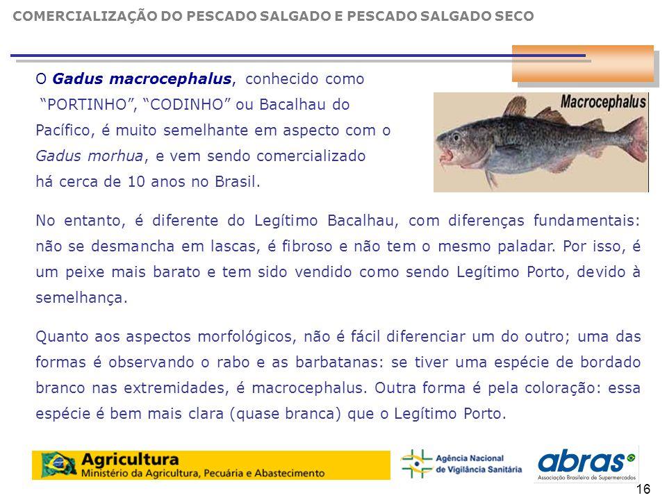 17 O Gadus macrocephalus, conhecido como PORTINHO , CODINHO ou Bacalhau do Pacífico, é muito semelhante em aspecto com o Gadus morhua, e vem sendo comercializado há cerca de 10 anos no Brasil.
