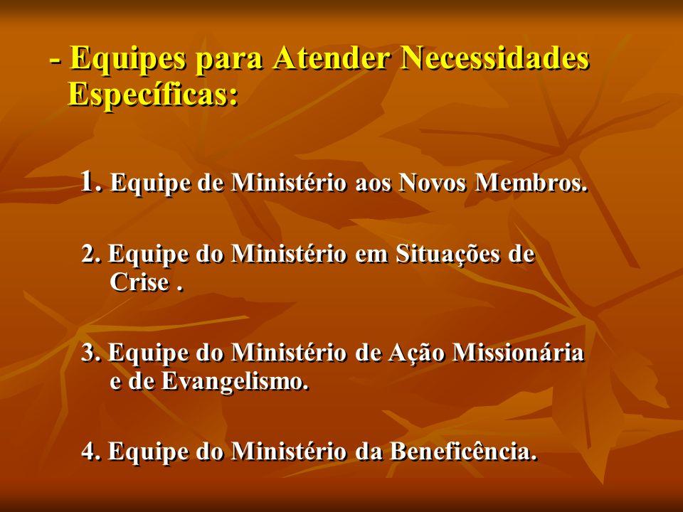 - Equipes para Atender Necessidades Específicas: 1.