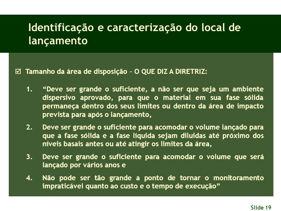 """Slide 19 Identificação e caracterização do local de lançamento  Tamanho da área de disposição – O QUE DIZ A DIRETRIZ: 1.""""Deve ser grande o suficiente"""