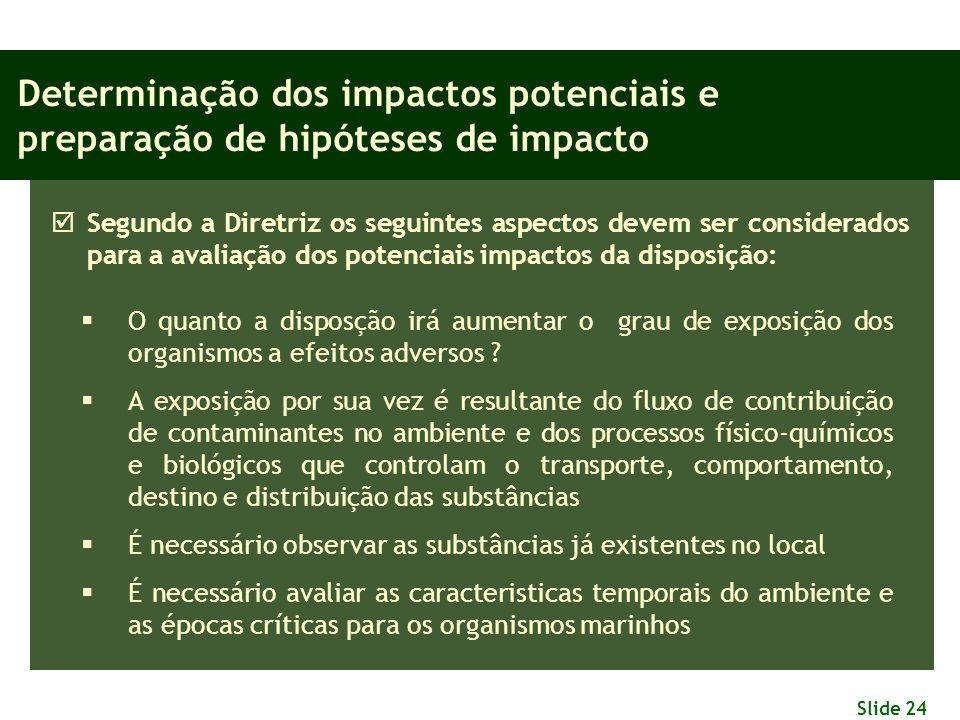 Slide 24 Determinação dos impactos potenciais e preparação de hipóteses de impacto  Segundo a Diretriz os seguintes aspectos devem ser considerados p