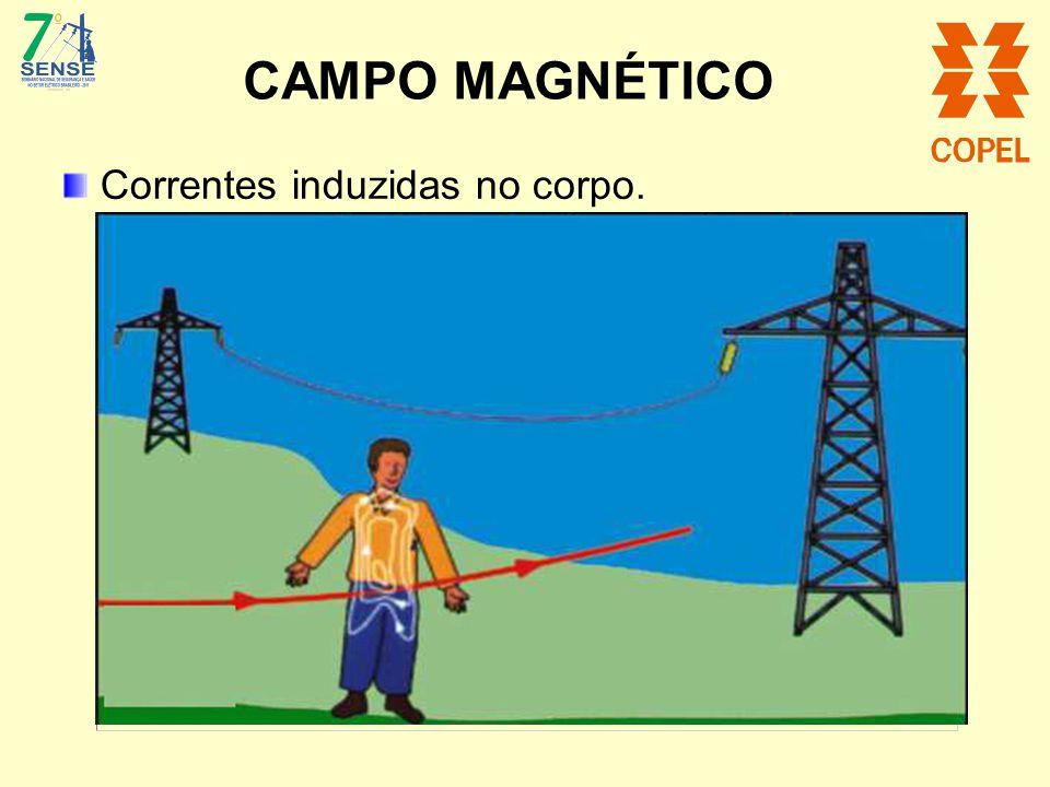 CAMPO MAGNÉTICO Correntes induzidas no corpo.